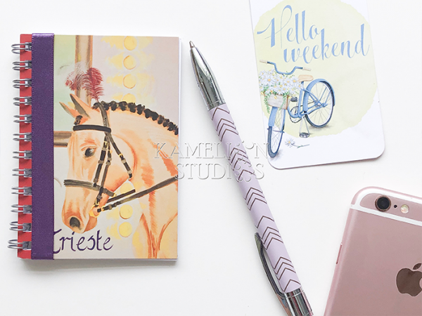 Horse notebook travel diary by Kamelion Studios